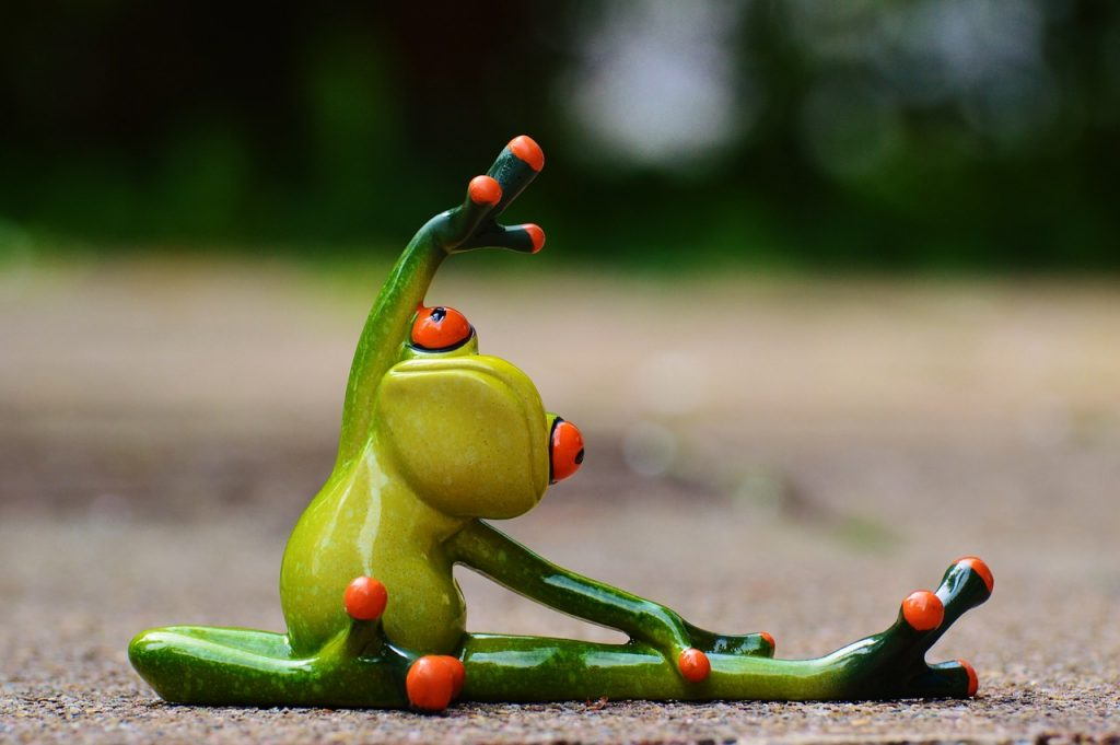 sport, gymnastics, frog